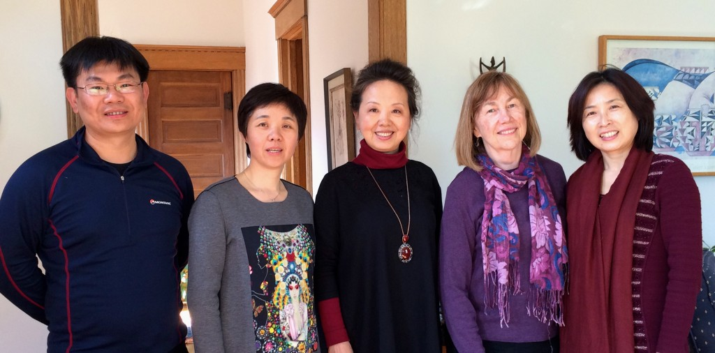 Social Work Leaders from China